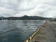 ひっそりとしている釜石港。